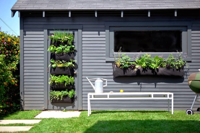 Vertical Garden Or Living Wall Ideas