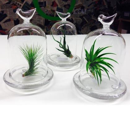 arrangement-floraux3