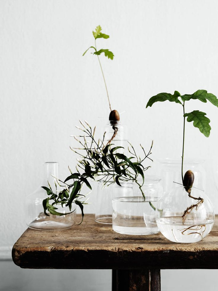 outdoor-living-babylonstoren